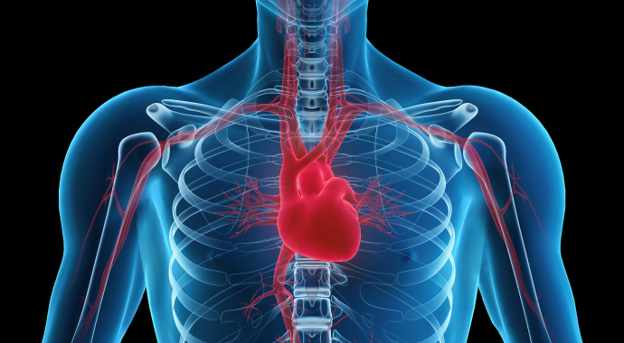http://www.einstein.br/PublishingImages/cardiologia-monitoramento-a-distancia.jpg